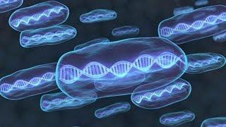 """""""أطفال حسب الطلب"""" باستخدام الحمض النووي لـ 3 أشخاص"""