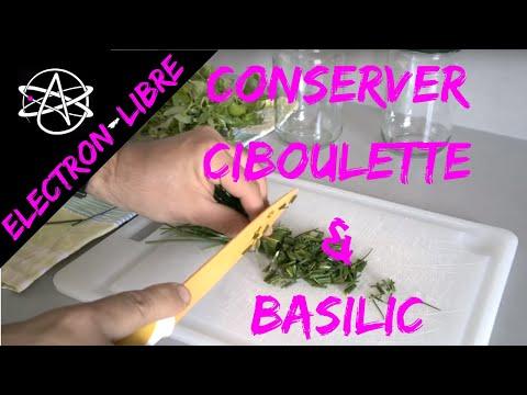 Conserver videolike - Comment conserver du basilic ...