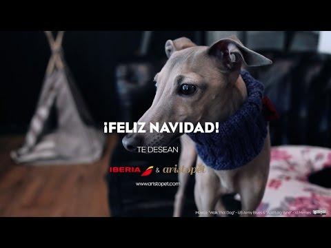 Natalia de Molina y su perro viajan en el tiempo con Iberia