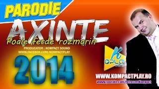 PARODIE 2014 cu Axinte - Foaie verde rozmarin Muzica de Petrecere 2014