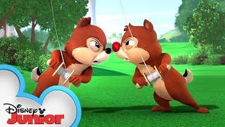 Kite-Tastrophy! | Chip 'N Dale's Nutty Tales | Disney Junior