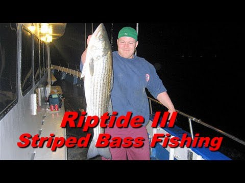 Riptide III - NYC Striped Bass Fishing @ City Island, New York