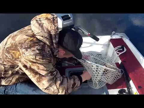 Bass Fishing Tournament on Johns Lake