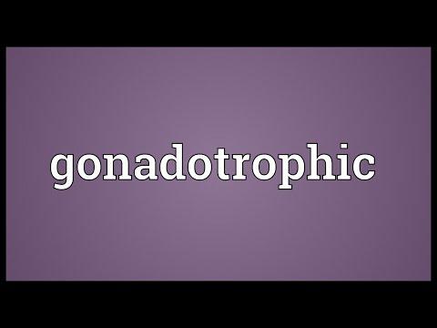 Header of gonadotrophic