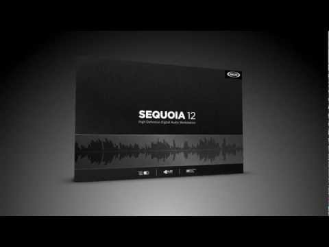Sequoia 12 Teaser (ENG)