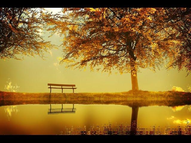 3 Hour Deep Meditation Music Healing Music, Relax Mind Body, Relaxing Music, Soothing Music в687