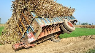 Tractor fails/ Over Loaiding sugarcan trolly/ Ford 3610 tractor pulling fails