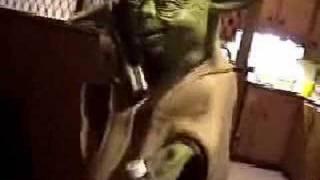 Yoda Drunk