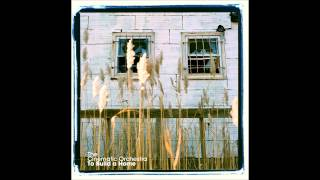 To Build A Home Radio Version Cinematic Orchestra Feat Patrick Watson