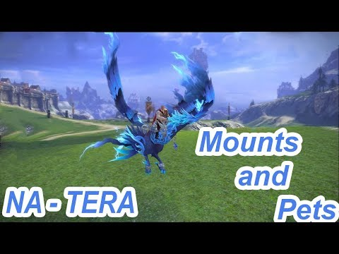Tera Online ( NA ) - Mounts and Pets ( on my main charachter )