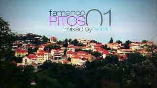 Flamenco Pitos Chillout Mix