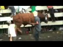 Jaripeo en Michoacan-Cocucho Agosto 08-Toros de Nahuatzen Video