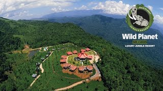Wild Planet Luxury Jungle Resort, Devala Nilgiris - Review by Tech Travel Eat