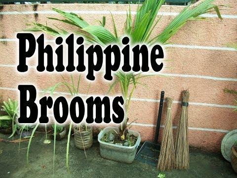 Philippine Brooms - Bonzai Coconut Trees - Philippine Lifestyle