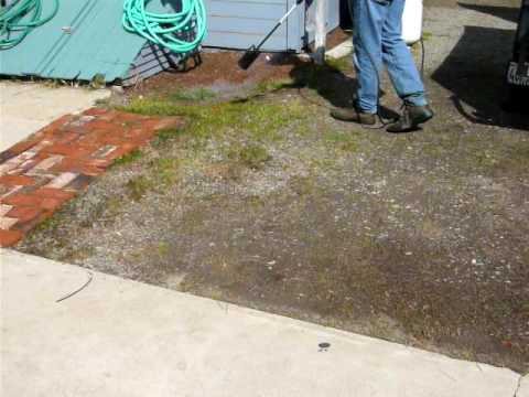 weed torch: using a propane weed torch to kill weeds