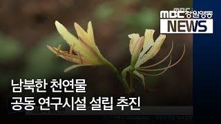 투/R)남북 천연물 공동 연구시설 설립 추진