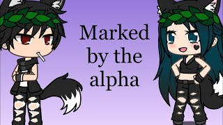 Marked by the alpha/2,000/sub special