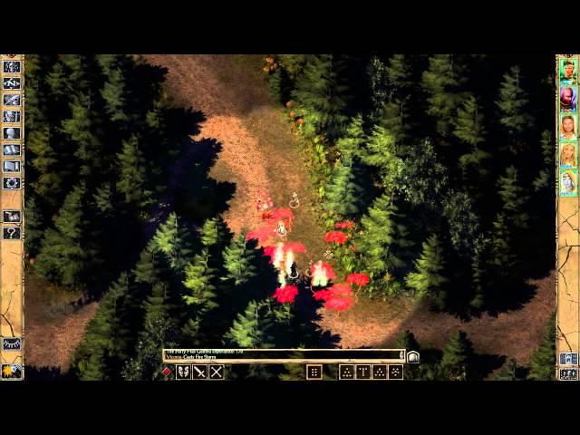 Руководство запуска: Baldur's Gate II: Enhanced Edition по сети