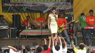 Tentang Rasa Dian Kusuma Sa 39 Brina Music Dangdut Jepara
