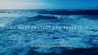 The ocean is our mission