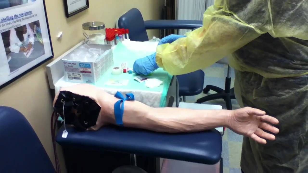 intro to phlebotomy skills