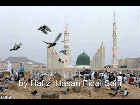 Aah Dil Main- New Saifi Naat By Hafiz Hassan-fidai Saifi video