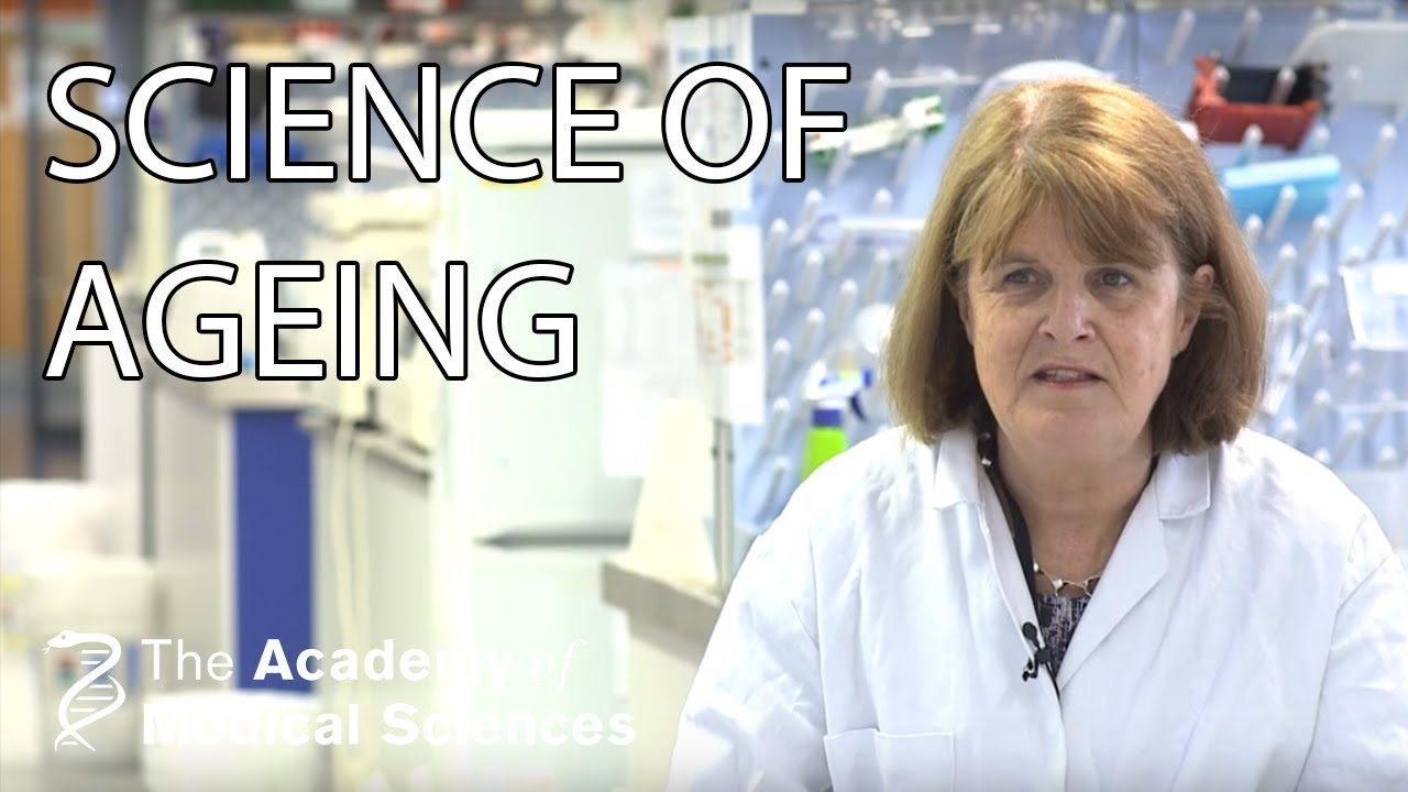 The Science of Ageing, by Professor Linda Partridge (full ...