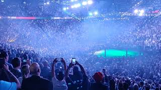 Conor McGregor Walkout at UFC 229