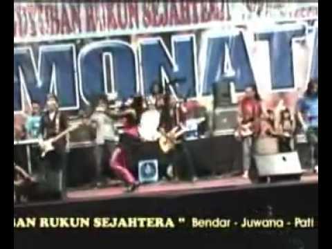 download lagu Dangdut Monata Tak Pernah - Citra Marcelina - 2010 gratis