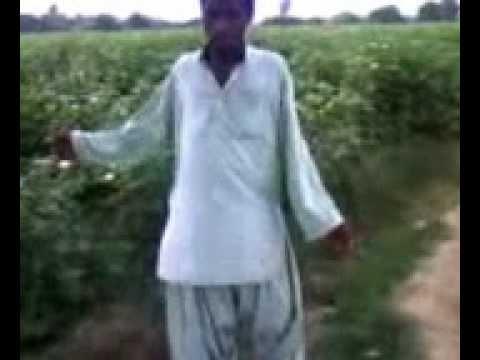 Dokhtar Bandari Shahram Kashani Free MP3 Download