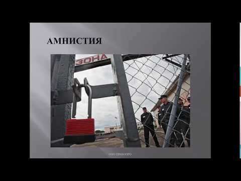 Поправки в статью 228 УК РФ и амнистия