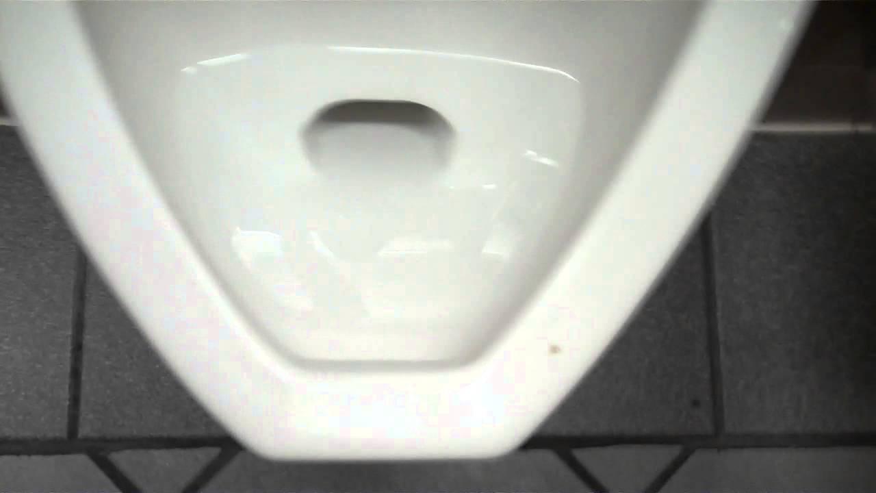 Bathroom Tour: AS Madera Toilet and Kohler Freshman Urinal
