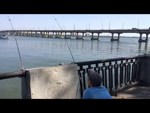 Рыбалка на Днепре. Начало осени.