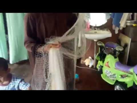 Teknik menebar jala oleh pembuat jala ikan/udang