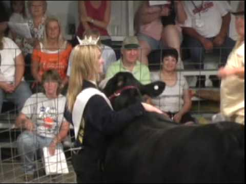 The annual Livestock Show has become a generational passion. This story focuses on the preparation and sale of livestock (8-21-2010) done each year at the Ha...
