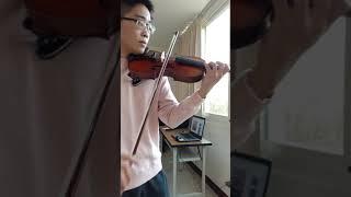 田馥甄-小幸運(我的少女時代主題曲)-小提琴版