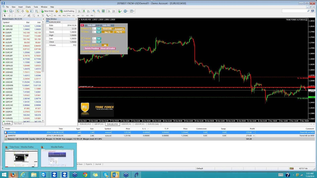 Forex tribe review