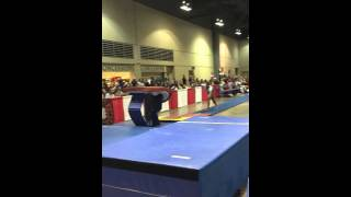 Blues Bbq Invitational River City Gymnastics