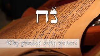 Download Song Parashat Noach - Why punish the world with water? - Rabbi Alon Anava Free StafaMp3