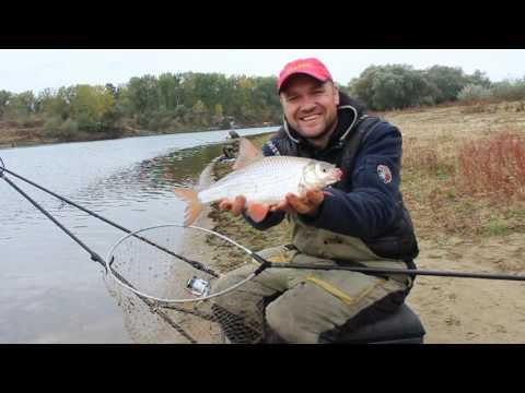 бюджетная рыбалка на фидер