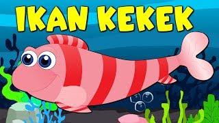 download lagu Lagu Kanak Kanak Melayu Malaysia - Ikan Kekek gratis