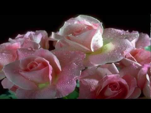 İçimdeki Sevginle Serap Mutlu Akbulut.mp3