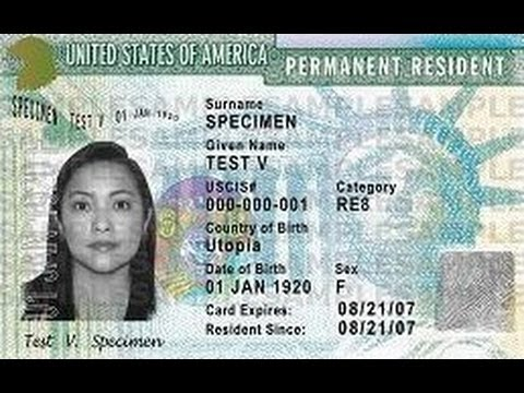 America's Immigration Disaster: Economic, Political, and Social Problems (1995)