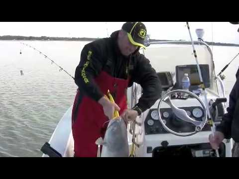 *How to tips on catfishing* HUGE BLUE CATFISH at Lake Tawakoni Texas (Part 2)