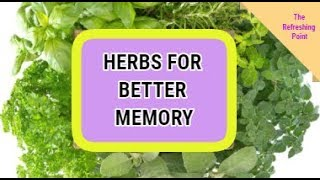 Support Memory Function with These Researched Herbs - Herbs That Maintain the Brain