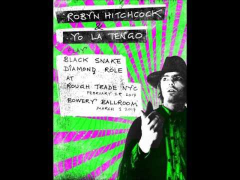 Robyn Hitchcock - Black Snake (album)