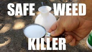 Safe Weed Killer: Easy Weed Killer from Simple Household Ingredients
