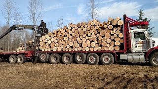 KENWORTH LOG TRUCK!!