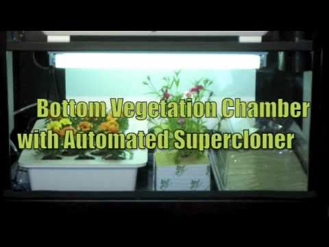 Hydroponics Grow Box   Grow Tips by SuperCloset