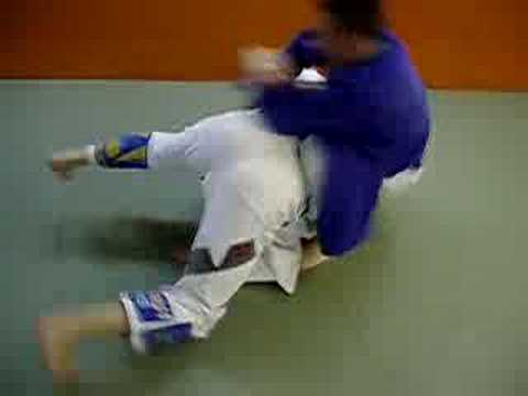 BJJ flow drill Image 1